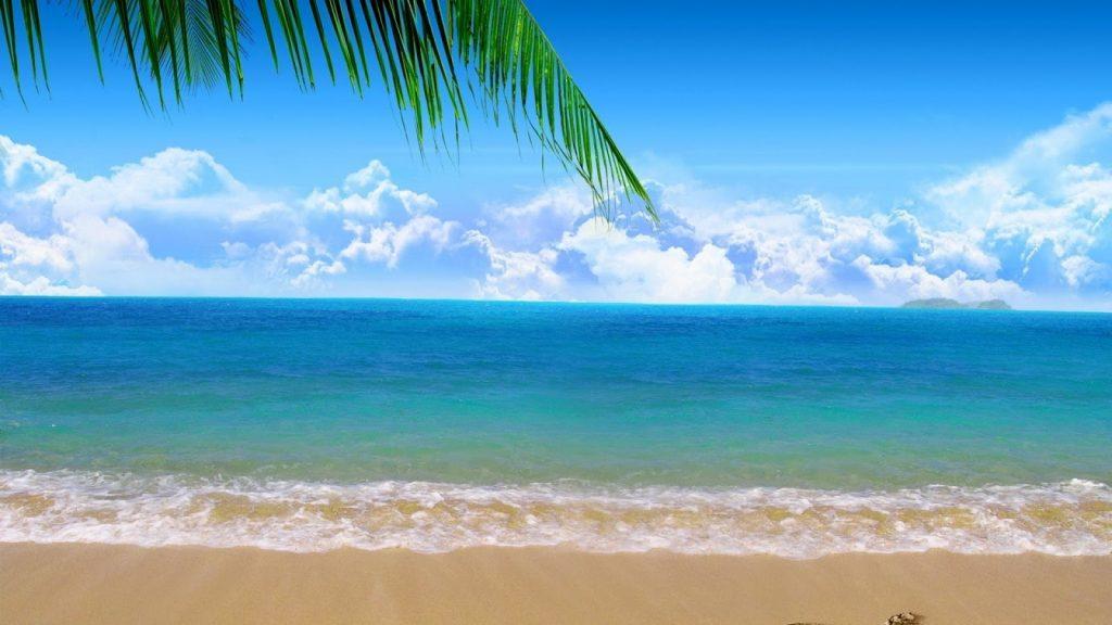 mơ thấy biển đánh con gì