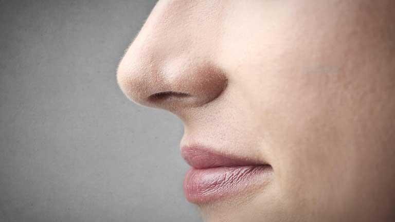 Xem tướng mũi